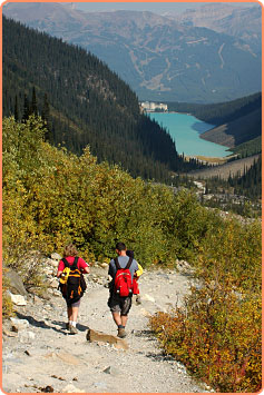 Active Physiotherapy in Calgary